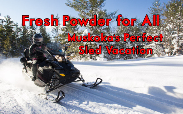 Fresh Powder for All – Muskokas Perfect Sled Vacation